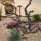 High plains xeriscaped design by Backyards Plus.
