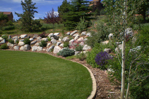 Backyards Plus landscapers in Denver, Colorado.