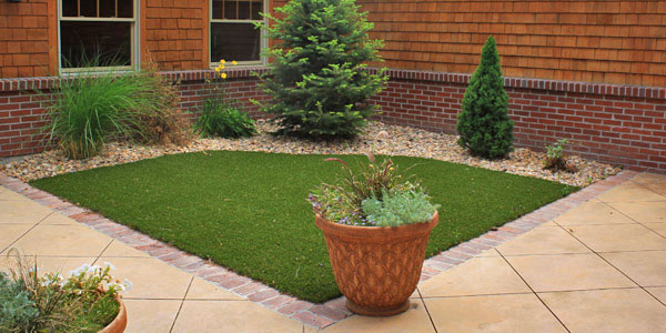 Synthetic grass blends into existing landscape.