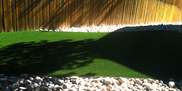 Lakewood, CO bakyard with artificial grass.