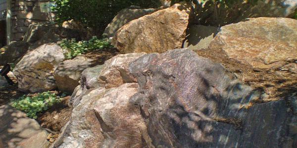 Rock garden in Arvada.