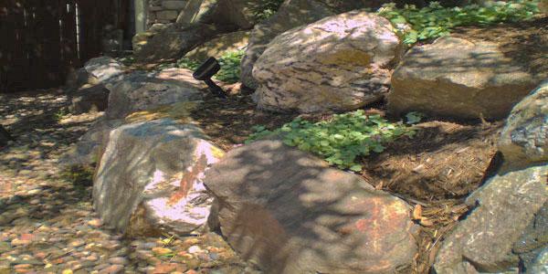 Arvada yard rock garden.