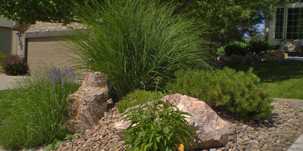 Creative use of decorative rock in a Denver suburb.