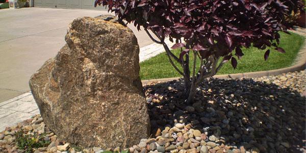 Decorative rock in a Lakewood Cul-de-Sac.