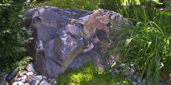 Unique decorative rock included in landscaping by Backards Plus.