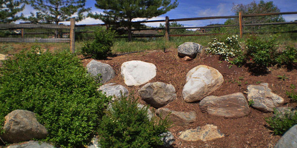 Landscaping and rock placement by Backyards Plus.