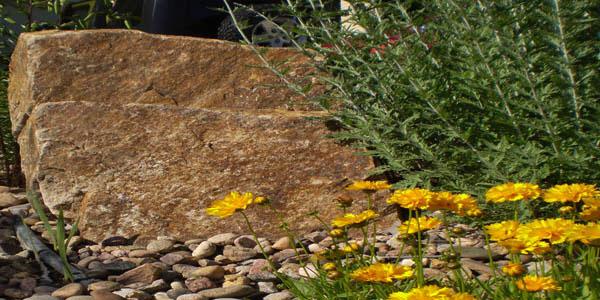 Rock and flower landscape design.