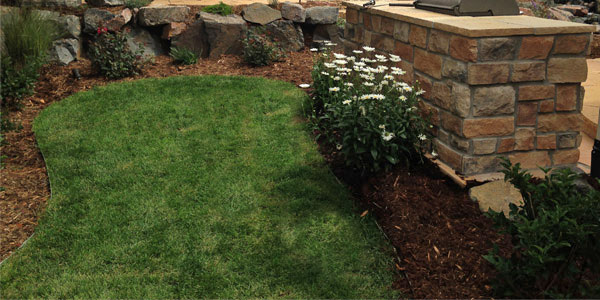 Backyards Plus is the best landscaping company in Denver, CO.