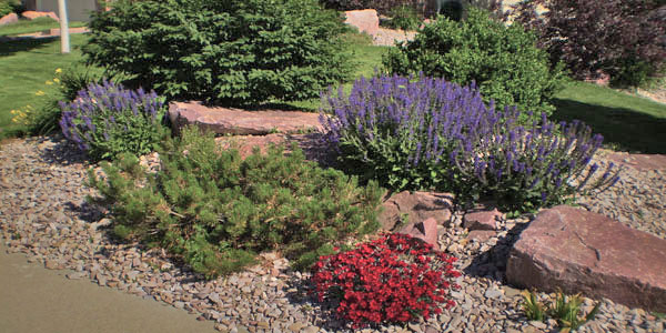 High plains landscaping ideas.