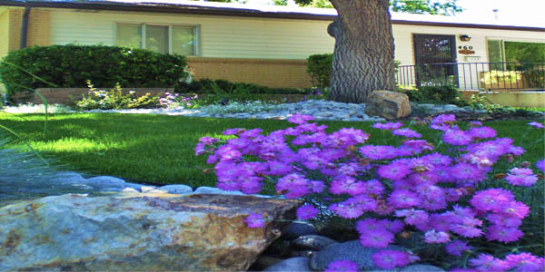 Landscaping ideas in Thornton, CO.