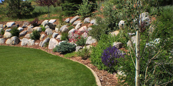 Use of Boulders in Arvada, CO landscaping project.