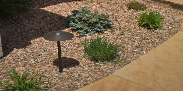 Water friendly landscaping ideas for Denver, CO.